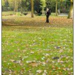Fotografieren im Herbst