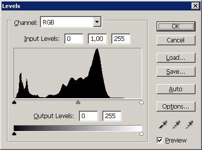 Tonwertkurve vor der Bearbeitung - RAW JPG Vergleich RAW Format erklärt