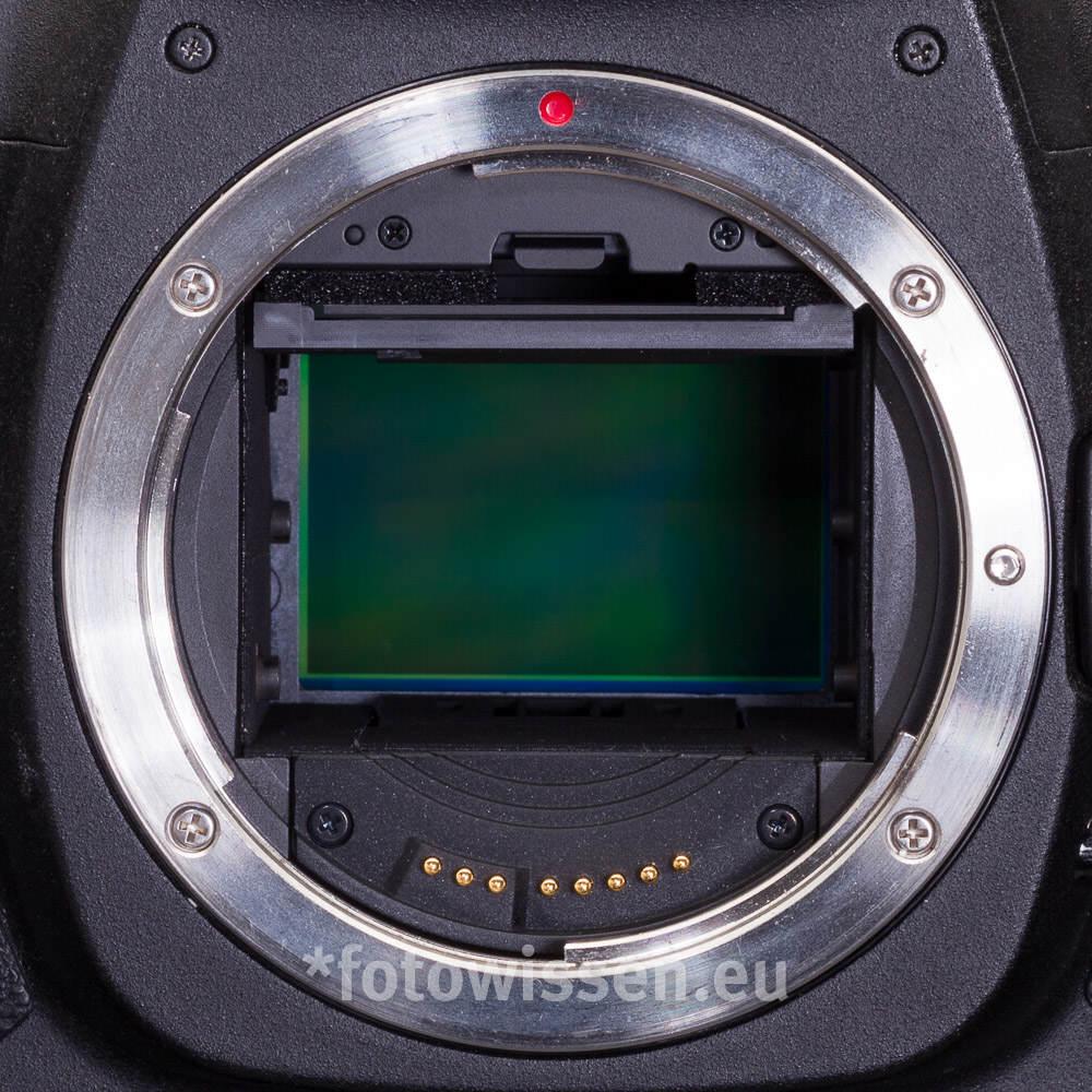 Vollformat oder Crop (SLR / Spiegelreflex). Welche Kamera kaufen?