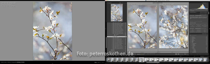Lightroom Fotokurs Schulung