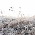 Hdr-fotografie Beispiel Naturfotografie Und Landschaftsfotografie