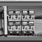 Test Silver Efex Pro 2 – Schwarzweiß