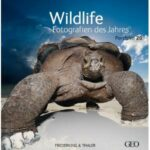 Fotoausstellung: Wildlife Fotografien des Jahres 2010