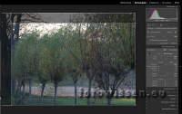 Aufgabe 1): Beschnitt des Fotos um den linken Teil. Um die Proportionen zu erhalten (3:2) habe ich das Foto auch oben beschnitten.