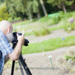 Fotoexkursion Kasteeltuinen Arcen Niederlande