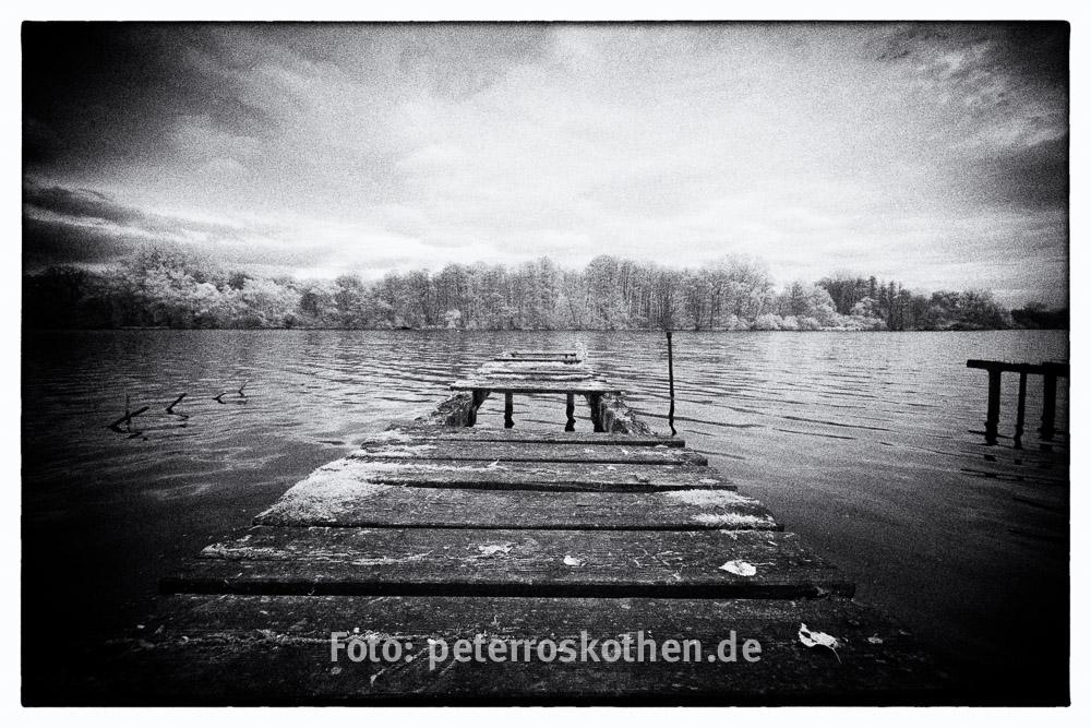 Schwarzweiß Foto Aus Digitalem Infrarot