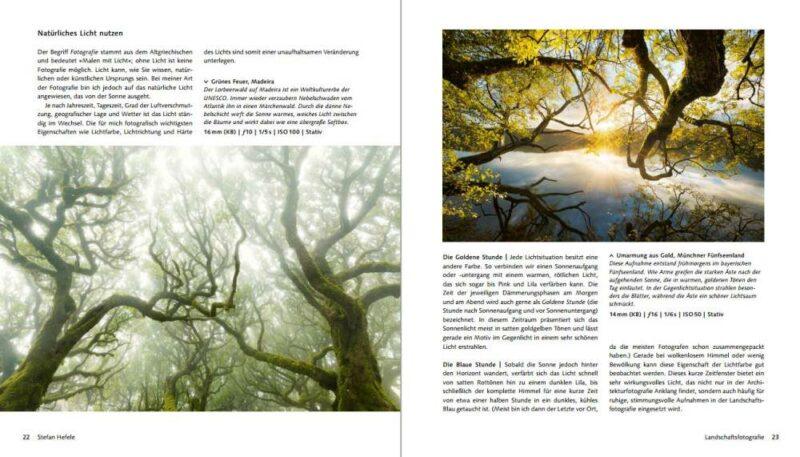 Von erfolgreichen Fotografen lernen: Naturfotografie
