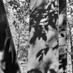 Ein fotografischer Nachmittag im LaPaDu – Alternativ in s/w