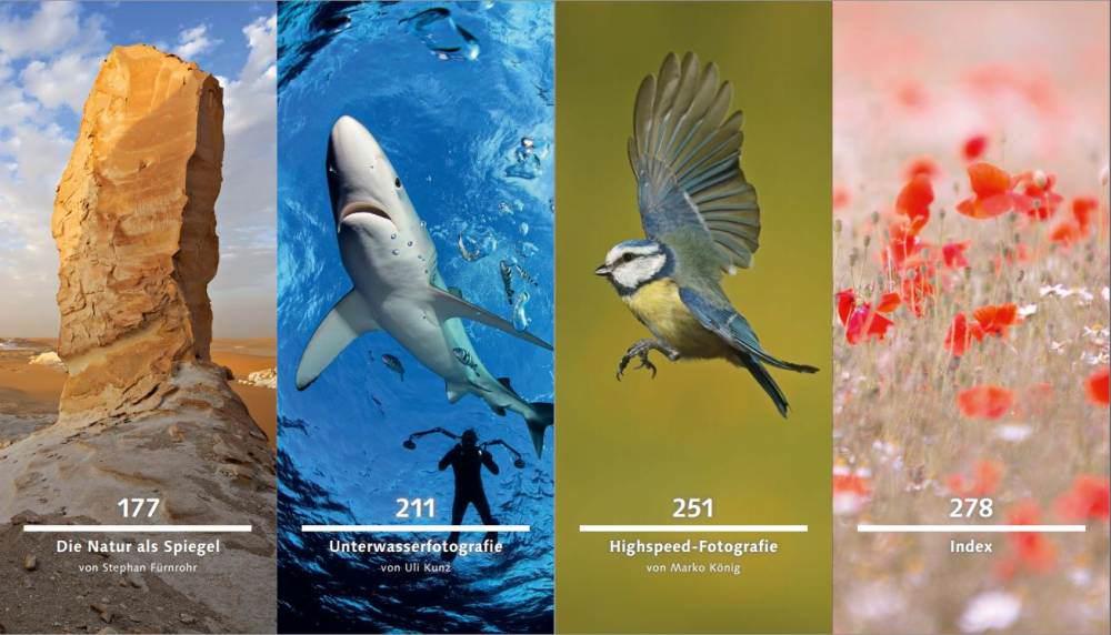 Von Erfolgreichen Fotografen Lernen: Naturfotografie – Buchrezension