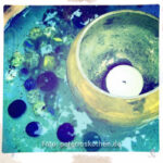 Gartenfotografie mit iPhone Makrofotos