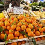 Clementinen aus Kalabrien - Clementine Calabria