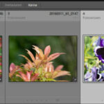 Optimierter Import von Fotos mittels Lightroom