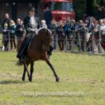 Dressurritt - Dorenburg, Grefrath, Mairitt, Pferde