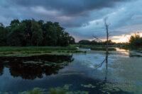 Abends am De Wittsee