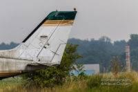 Motiv Jagd am Flugzeugfriedhof