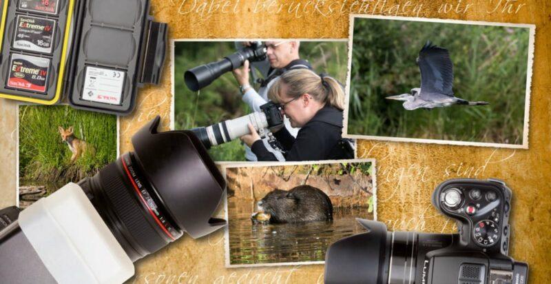 Fotokurs mit Teleobjektiv Wildlfe Tierfotografie