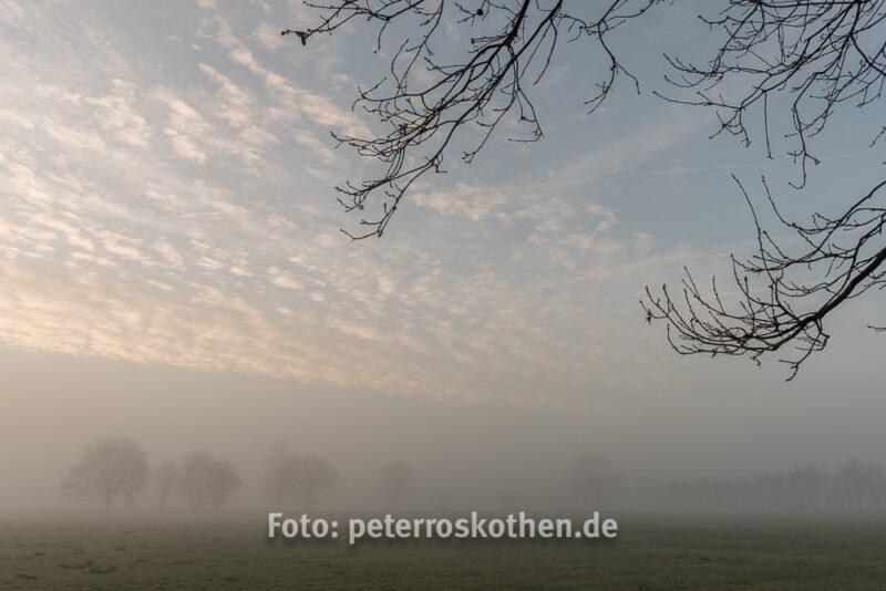 Fujifilm X-T2 Testfoto am Niederrhein - MorgenstimmungFujifilm X-T2 Testfoto am Niederrhein - Morgenstimmung
