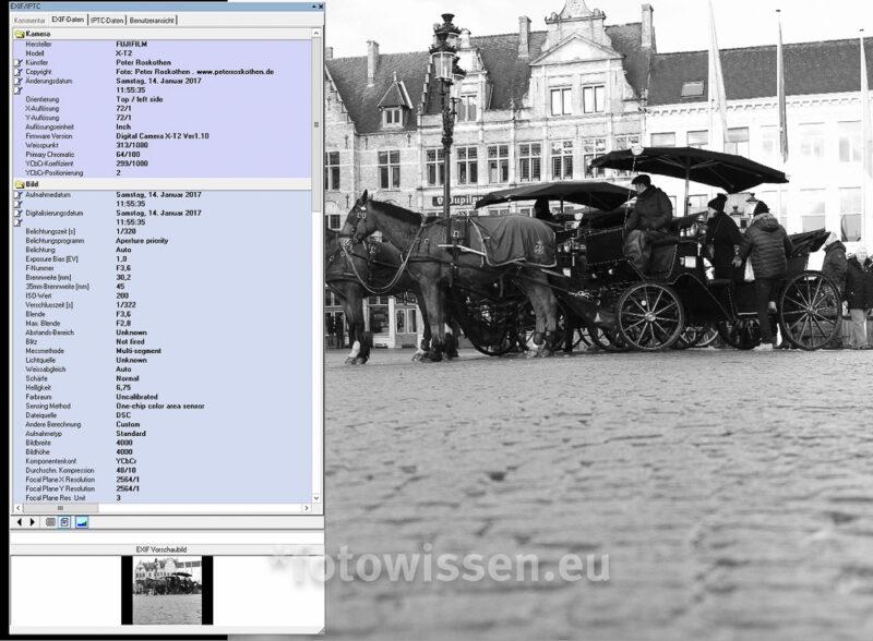 Foto Metadaten in Exifer angezeigt