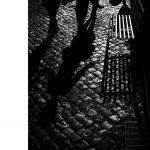 David duChemin: Die Seele der Kamera - Die Rolle der Technik