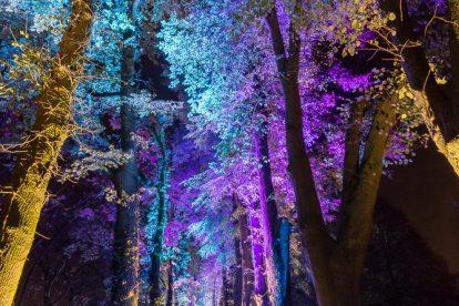 Enchanted Gardens 2017