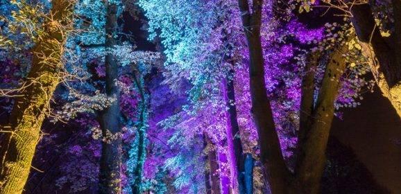 Enchanted Gardens 2017 in Arcen