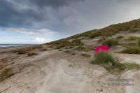 Norderney - Teil 2 - Der rote Regenschirm