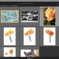 Darktable für Windows kostenlos – Bildbearbeitung-Konkurrent für Lightroom