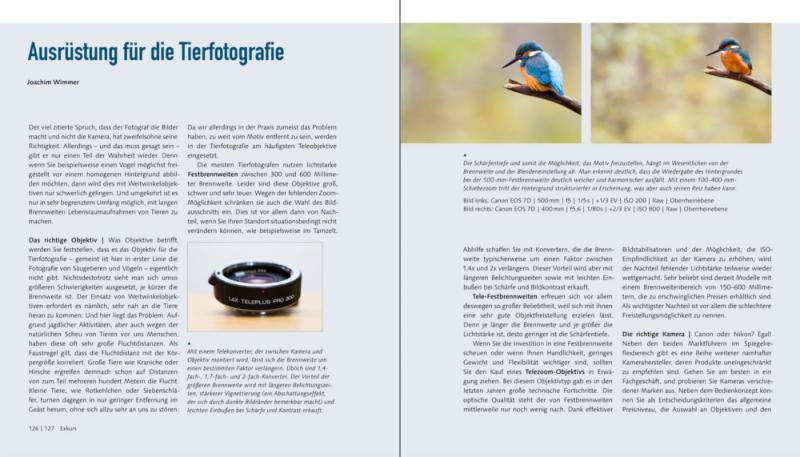 Die Ausrüstung der Tierfotografie - Kameras und Objektive
