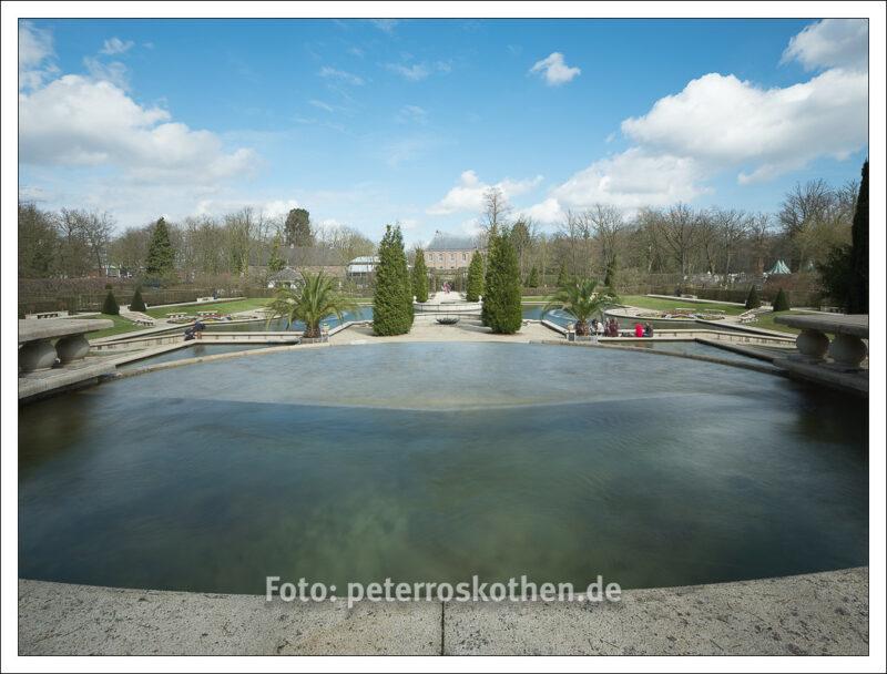 Frühlingserwachen - Frühlingsfotos selber fotografieren