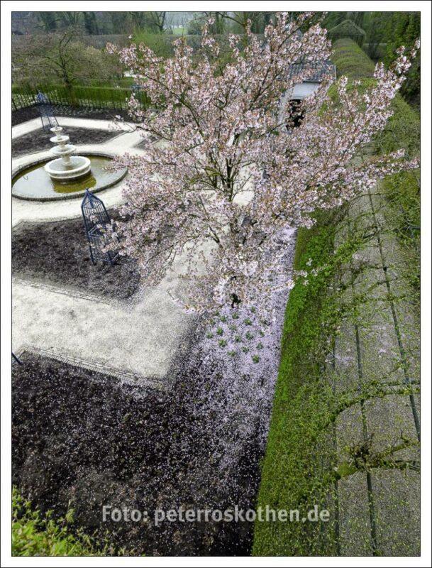 Frühlingsbilder in der Vogelperspektive