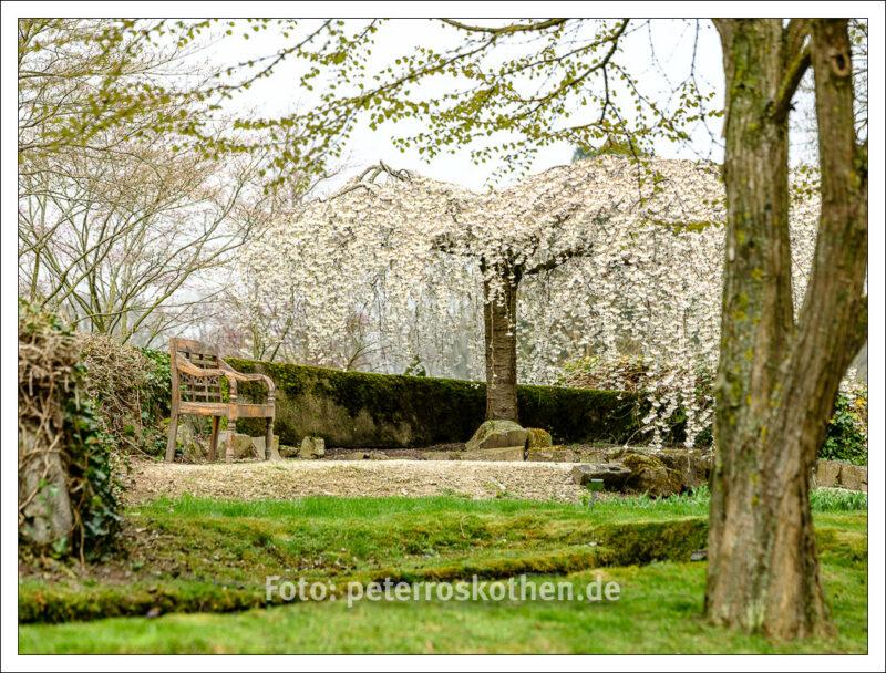 Kleine Schärfentiefe in der Frühlingsfotografie
