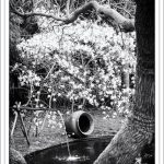 Fujifilm GF110mm Testbild schwarzweiß
