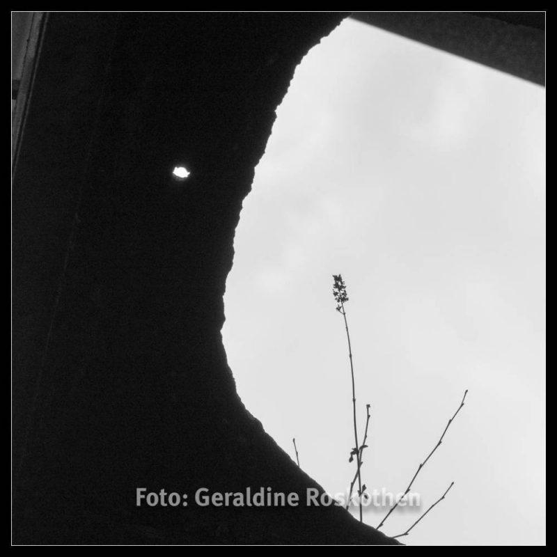 Durchblicke - Landschaftspark Nord Schwarzweiß Fotos - Geraldine Roskothen
