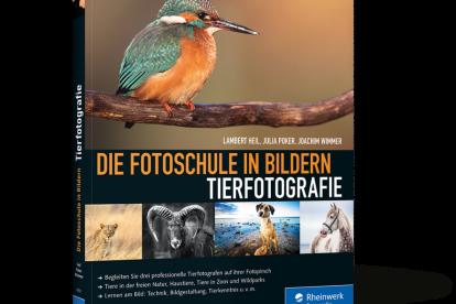 Tierfotografie - Die Fotoschule in Bildern