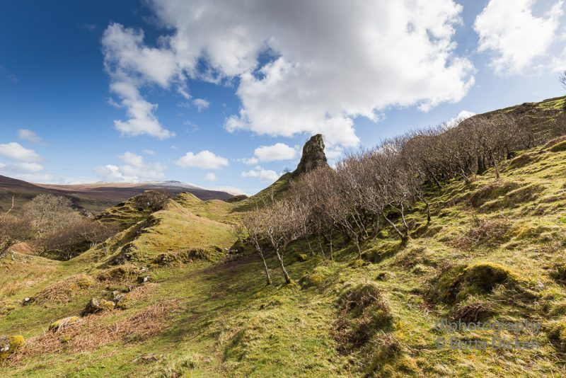 Isle of Skye Fairy Glen