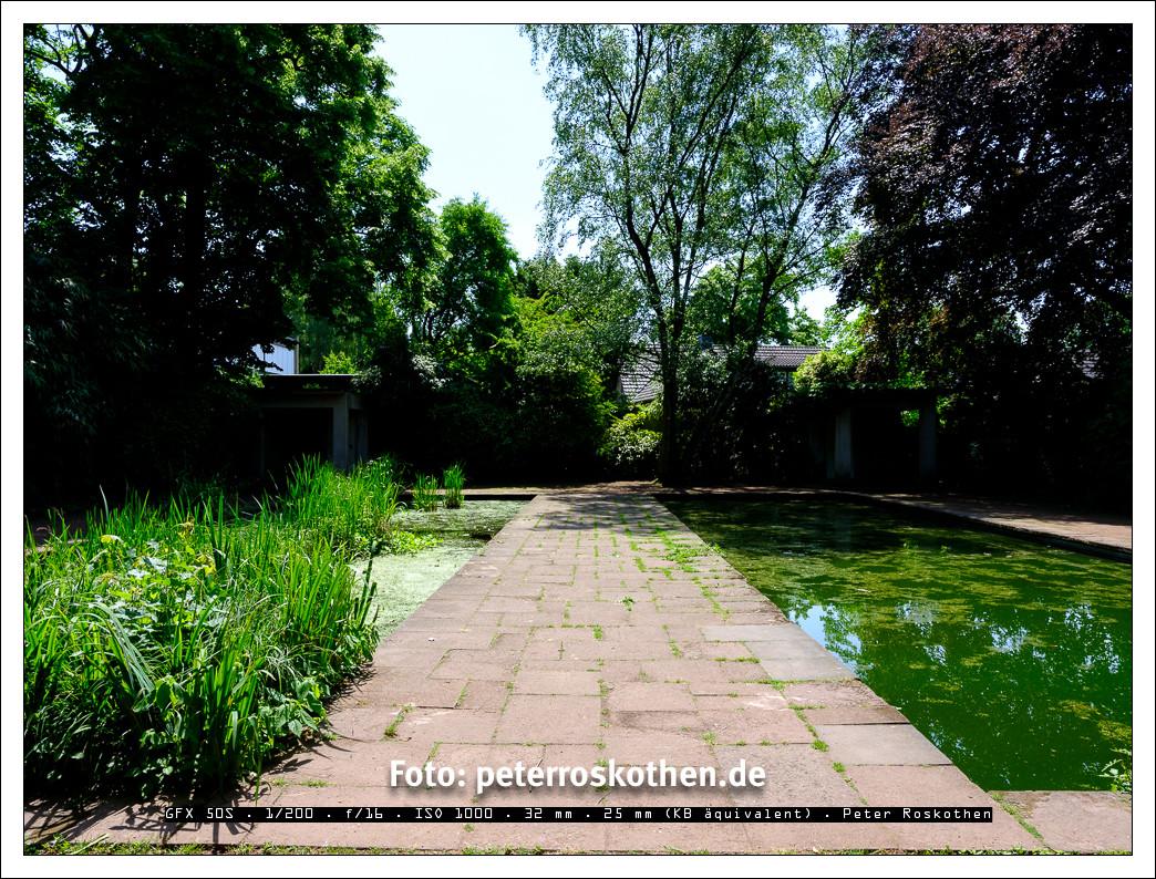 Gartenfotografie ist oft sehr kontrastreich und schwierig