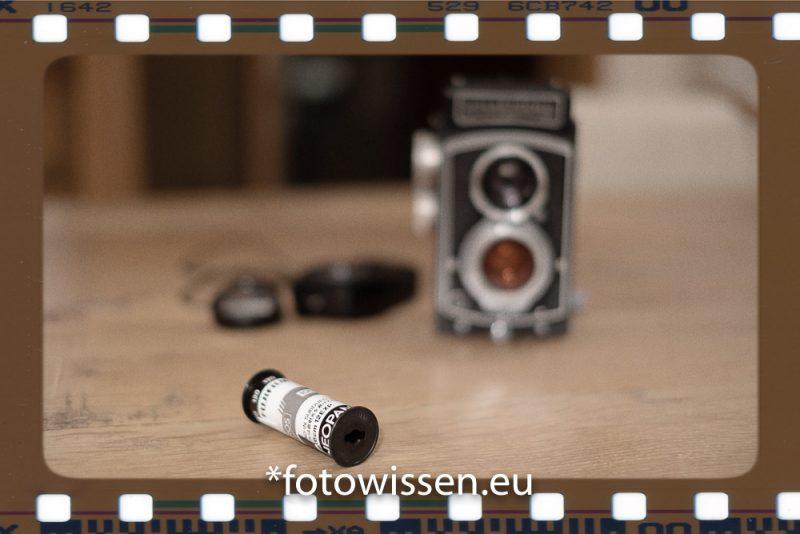 Analog Fotografieren mit Film - Zurück in die Vergangenheit?