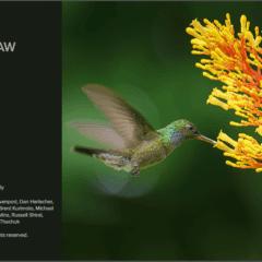 Software Updates ON1 Photo RAW und Lightroom Classic CC 7.4