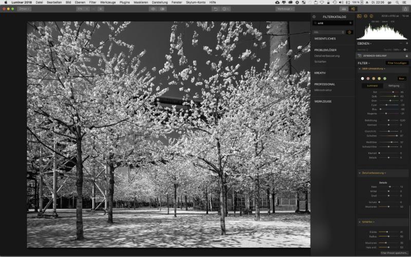 Luminar ist eine Photoshop Alternative und wandelt auch in Schwarzweisse Fotos