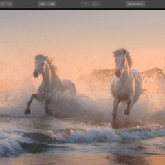 Angebot Lumiar 2018 für EUR 49,- – Skylum Blitzverkauf Bildbearbeitung