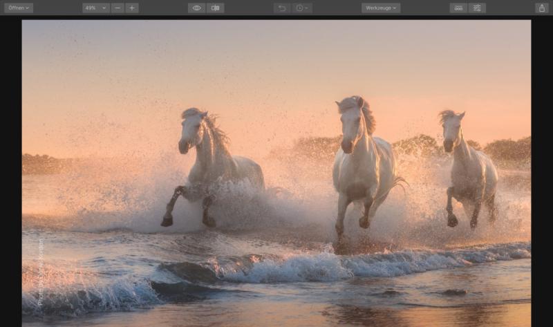 Angebot Lumiar 2018 für EUR 49,- - Skylum Blitzverkauf Bildbearbeitung