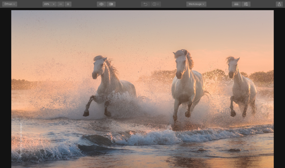 Skylum bringt in Kürze Fotoverwaltung (DAM) - Angriff auf Adobe