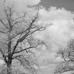 Schwarzweiß Denken und Fotografieren Tutorial