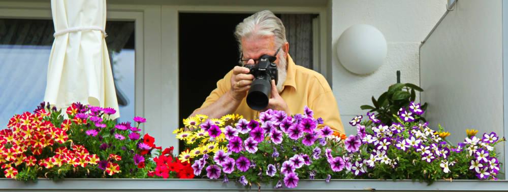 Tierfotografie auf dem Balkon - Teil 1