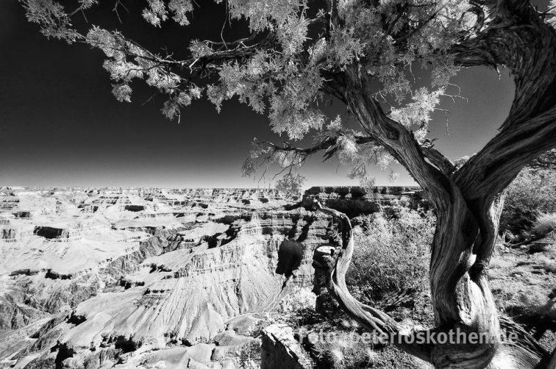 Landschaftsfotografie Schwarzweiß. So schön kann der Verzicht auf Farben wirken