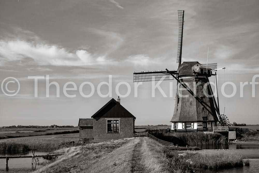 Windmill Texel