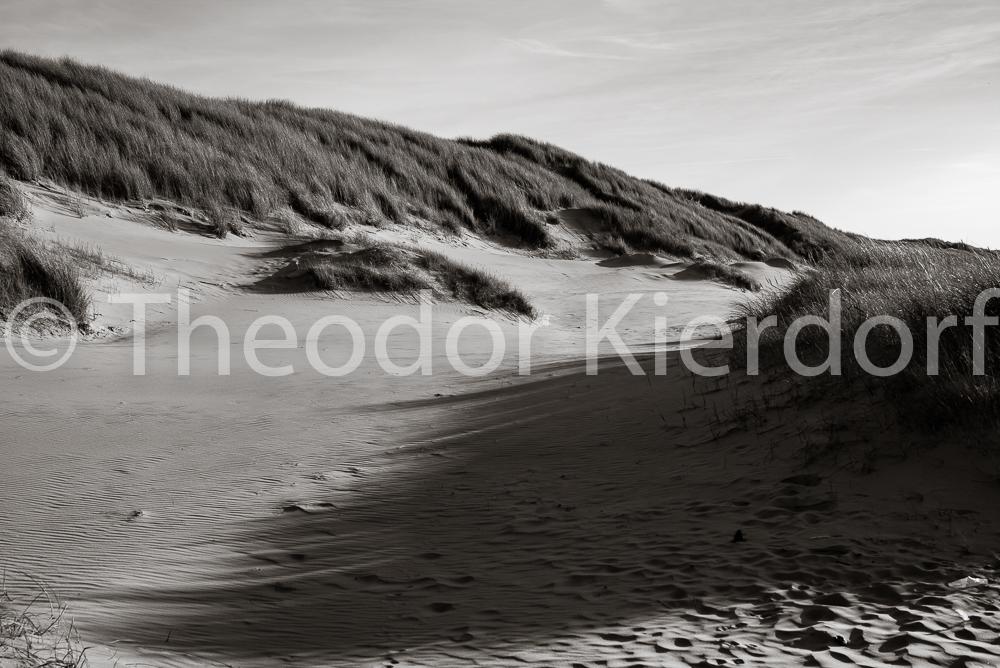 Dunes Texel