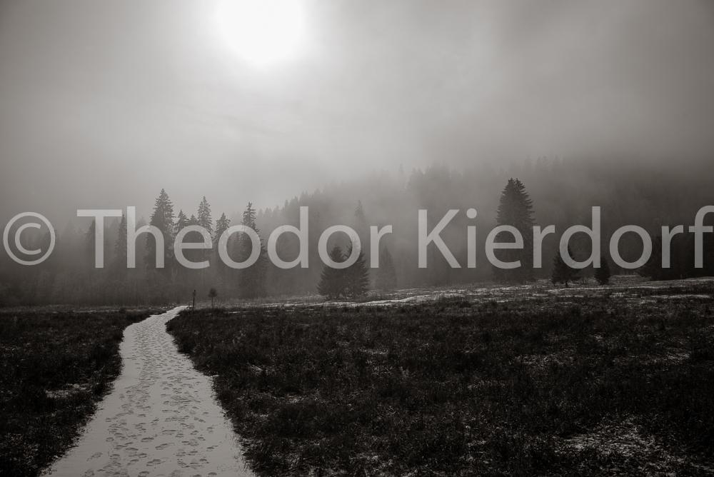 Nebel am Spitzingsee