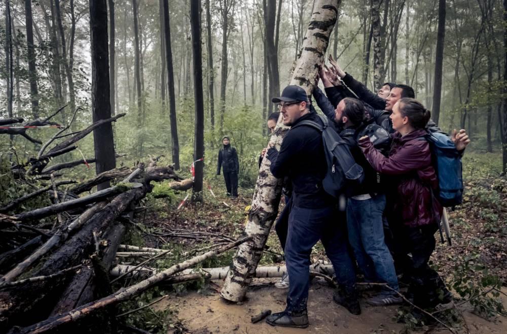 Protest im Hambacher Forst, Waldspaziergang, Demonstation, Umweg