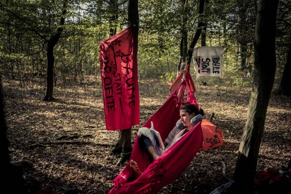 Hambacher Forst: Widerstand gegen die Rodung durch die RWE Power